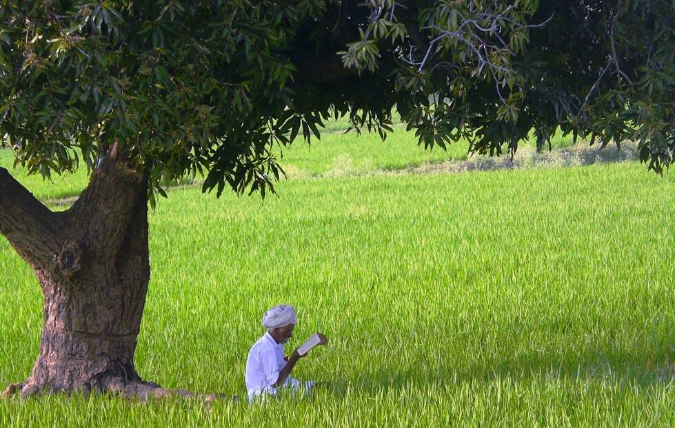 מסע רוחני וריטריט לדרום הודו בפברואר 2019